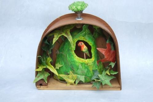 Kijk-kastje papegaai